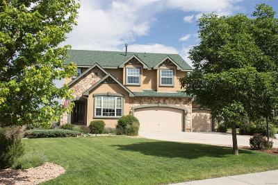 Pine Creek Single Family Home Under Contract: 3252 Indian Peak Court