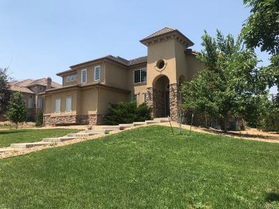 Castle Rock Single Family Home Active: 693 Cinnabar Drive