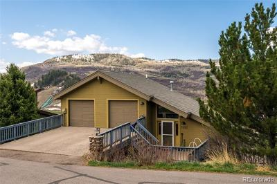 Steamboat Springs Single Family Home Active: 1295 Buckskin Drive