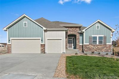Aurora Single Family Home Active: 8575 South Zante Court