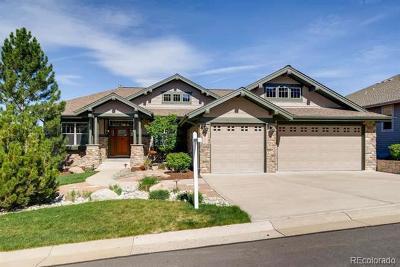 Castle Rock Single Family Home Active: 2772 Hawk Point Court