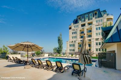 Golden Triangle Condo/Townhouse Active: 975 North Lincoln Street #3B-N