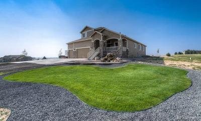 Parker CO Single Family Home Active: $699,000