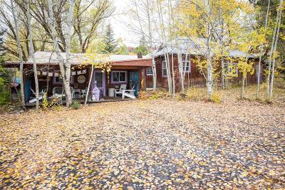 Steamboat Springs Single Family Home Active: 841 Yahmonite Street