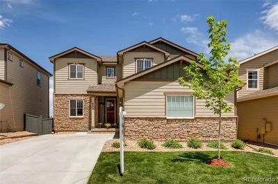 Castle Rock Single Family Home Active: 4375 McMurdo Court