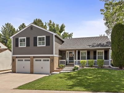 Centennial Single Family Home Under Contract: 6870 South Niagara Court