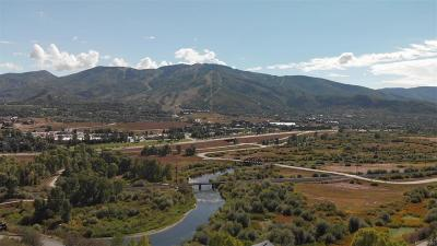 Steamboat Springs Residential Lots & Land Active: 37225 William William