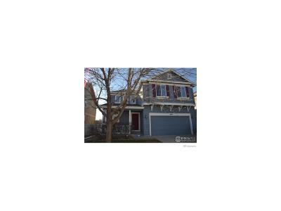 Longmont Single Family Home Active: 4019 San Marco Drive