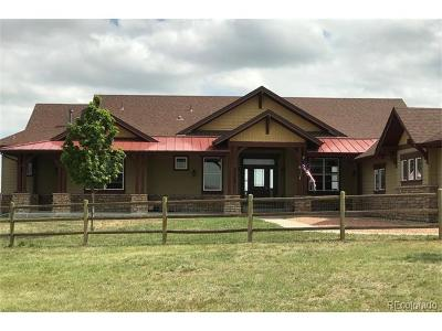 Elbert County Single Family Home Active: 33500 Greystone Circle