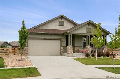 Boulder County Single Family Home Active: 2029 Sicily Circle