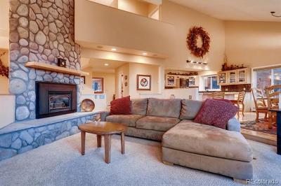 Summit County Single Family Home Active: 56 Colorado Way