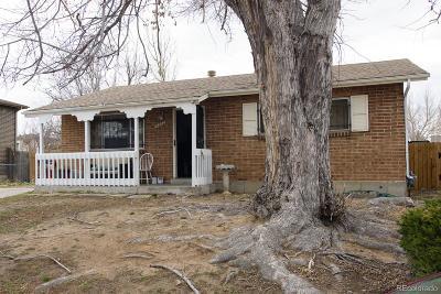 Denver Single Family Home Active: 14862 Randolph Place