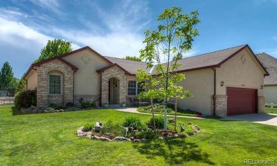 Firestone Single Family Home Under Contract: 6244 Sage Avenue