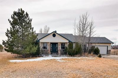 Berthoud Single Family Home Active: 4623 Foothills Drive