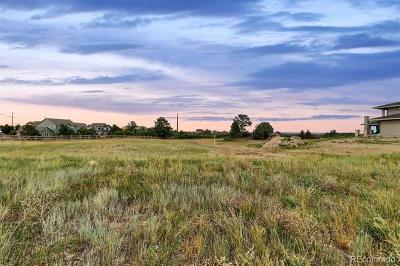 Douglas County Residential Lots & Land Active: 2414 Eastview Drive