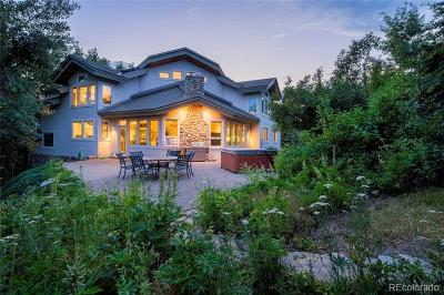 Steamboat Springs Single Family Home Active: 1170 Redwoods Drive