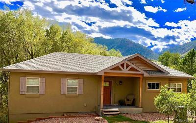 Palmer Lake Single Family Home Under Contract: 135 Walnut Avenue