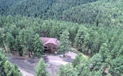 Evergreen Single Family Home Active: 27874 Meadow View Drive