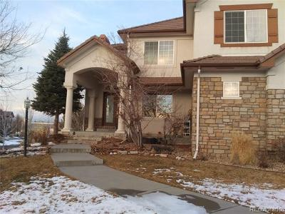 Arapahoe County Single Family Home Active: 16713 East Lake Drive