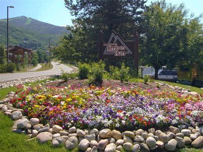 Steamboat Springs Condo/Townhouse Active: 2025 Walton Creek Road #420