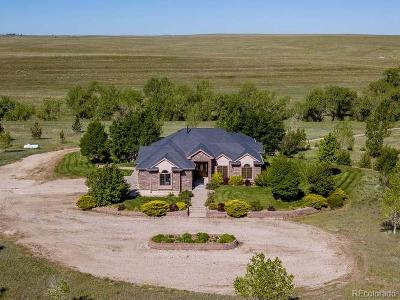 Elbert County Single Family Home Active: 14250 County Road 166