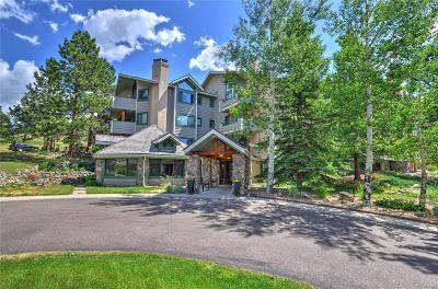 Evergreen Condo/Townhouse Under Contract: 31819 Rocky Village Drive #216