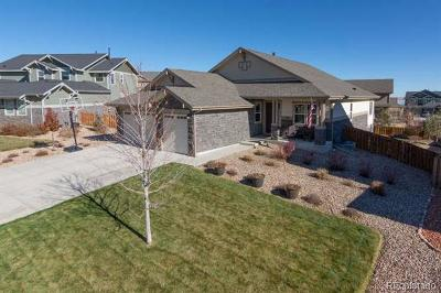 Aurora Single Family Home Active: 6032 South Little River Court