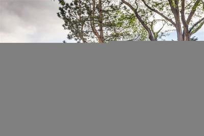 Lakewood Single Family Home Active: 1660 South Iris Way