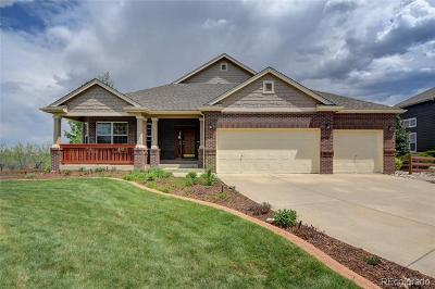 Aspen Creek Single Family Home Active: 14068 Willow Wood Court