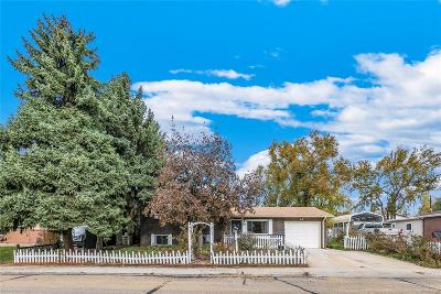 Longmont Single Family Home Active: 10 Gardner Drive