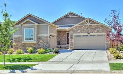 Beacon Point Single Family Home Under Contract: 6029 South Little River Way