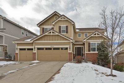 Meadows, The Meadows Single Family Home Under Contract: 2623 Trailblazer Way