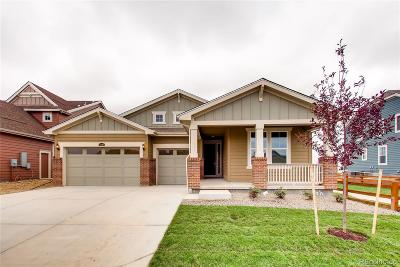Longmont Single Family Home Active: 2320 Tyrrhenian Circle