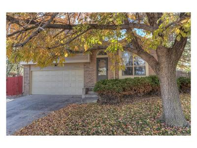 Castle Rock Single Family Home Active: 5413 Wagonwheel Trail