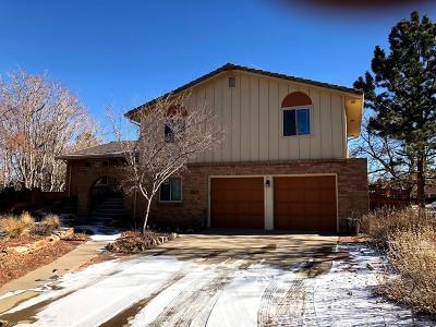 Arapahoe County Single Family Home Active: 11697 East Mexico Avenue