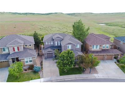 Highlands Ranch Single Family Home Active: 4478 Canyonbrook Drive
