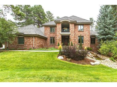 Castle Rock Single Family Home Under Contract: 461 Lorraway Drive
