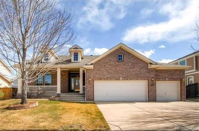 Single Family Home Under Contract: 10126 Riverstone Drive