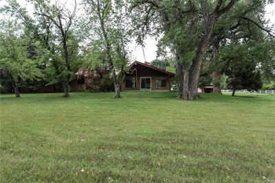 Littleton Single Family Home Under Contract: 745 Front Range Road
