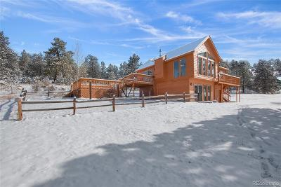 Pine Single Family Home Under Contract: 13811 Pine Valley Road