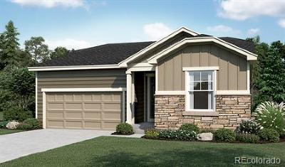 Castle Rock Single Family Home Active: 617 Pine Warbler Court