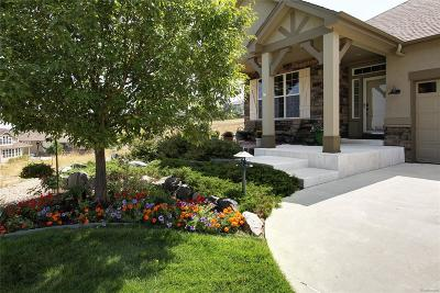 Arvada Single Family Home Active: 8703 Deframe Court