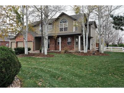 Berthoud Single Family Home Active: 2249 Breckenridge Drive