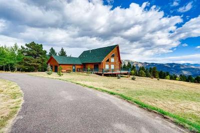 Clear Creek County Single Family Home Active: 625 Old Glory Road