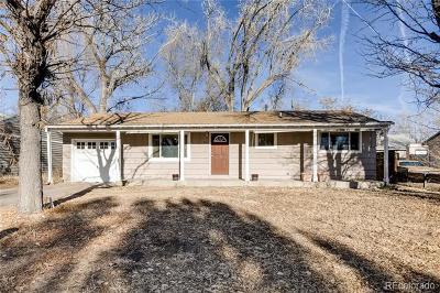 Colorado Springs Single Family Home Active: 53 Security Boulevard