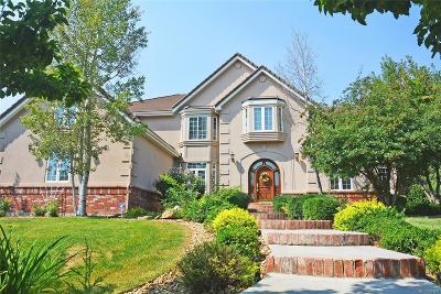 Arvada Single Family Home Active: 7355 Nile Street