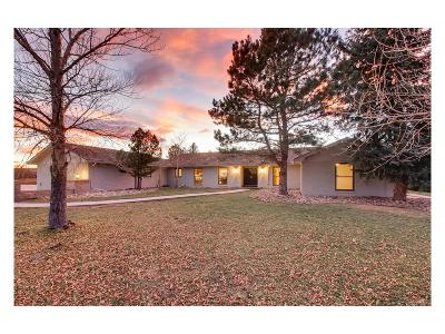 Castle Rock Single Family Home Under Contract: 3945 Augustine Court