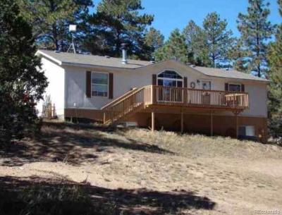 Cotopaxi CO Single Family Home Under Contract: $243,000