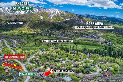 Residential Lots & Land Active: Steamboat Boulevard
