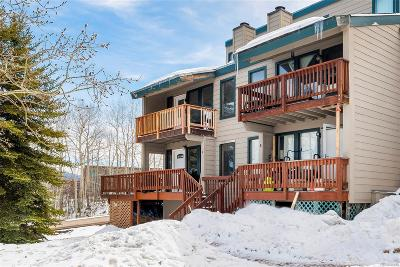 Condo/Townhouse Sold: 23195 Schussmark Trail #F